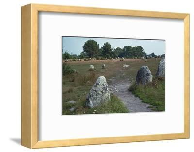 Megalithic alignments at Carnac, 34th century BC. Artist: Unknown-Unknown-Framed Photographic Print