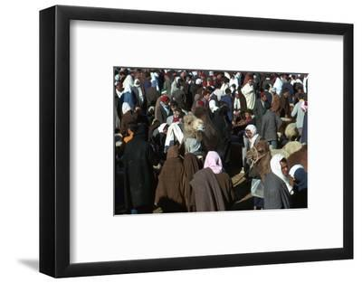 Camel market in Sousse, Tunisia. Artist: Unknown-Unknown-Framed Photographic Print