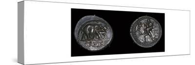 Roman coins of Julius Caesar, 1st century BC. Artist: Unknown-Unknown-Stretched Canvas Print