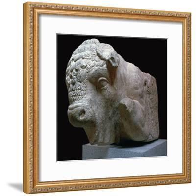 Bull's head Roman sculpture from the Municipal Forum in Merida, 1st century BC. Artist: Unknown-Unknown-Framed Giclee Print
