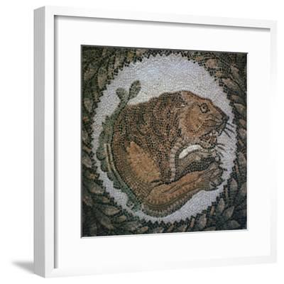 Detail of a Roman mosaic showing the head of a lion, 4th century. Artist: Unknown-Unknown-Framed Giclee Print