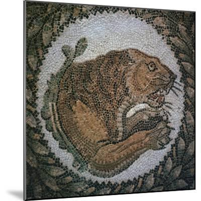 Detail of a Roman mosaic showing the head of a lion, 4th century. Artist: Unknown-Unknown-Mounted Giclee Print