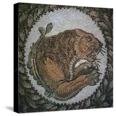 Detail of a Roman mosaic showing the head of a lion, 4th century. Artist: Unknown-Unknown-Stretched Canvas Print