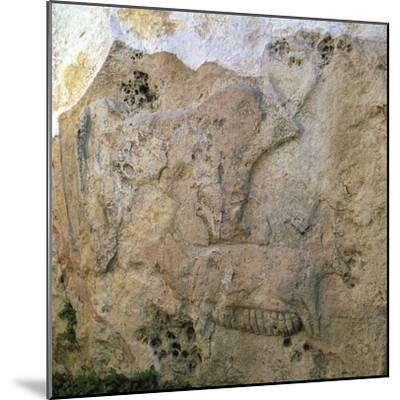 Sow-and-piglets relief from Malta. Artist: Unknown-Unknown-Mounted Giclee Print