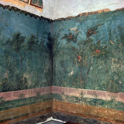 Painted room from Livia's villa, 1st century BC. Artist: Unknown-Unknown-Framed Giclee Print