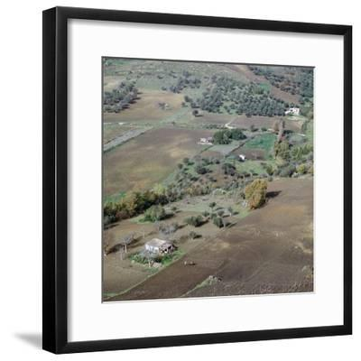 Ploughing in Sicily. Artist: Unknown-Unknown-Framed Photographic Print