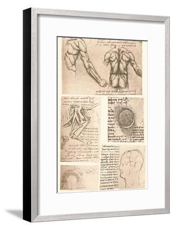 Four anatomical drawings, c1472-c1519 (1883)-Leonardo da Vinci-Framed Giclee Print