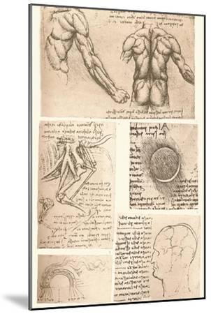 Four anatomical drawings, c1472-c1519 (1883)-Leonardo da Vinci-Mounted Giclee Print