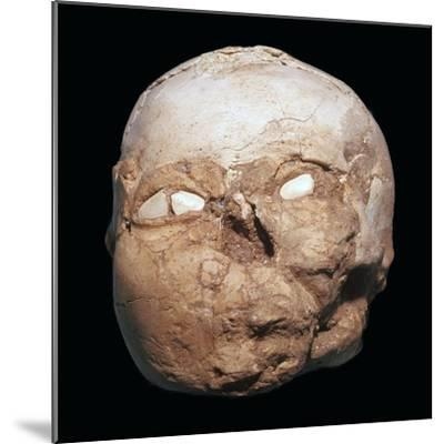 Skull from Jericho, modelled with plaster and shells-Unknown-Mounted Giclee Print