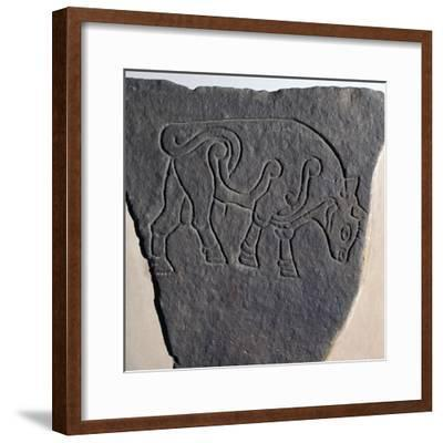 Pictish incised stone with a bull motif, 6th century-Unknown-Framed Giclee Print