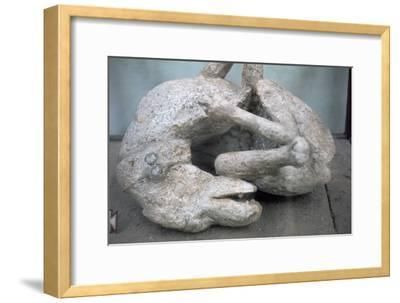 Cast of a chained dog from Pompeii, 1st century-Unknown-Framed Giclee Print