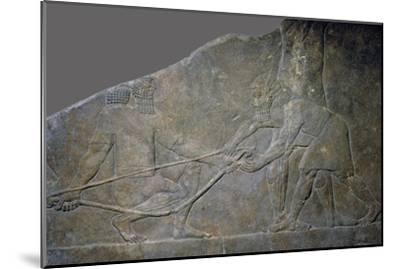 Stone panel from the North Palace of Ashurbanipal, Nineveh, northern Iraq, Neo-Assyrian, c645 BC-Unknown-Mounted Giclee Print