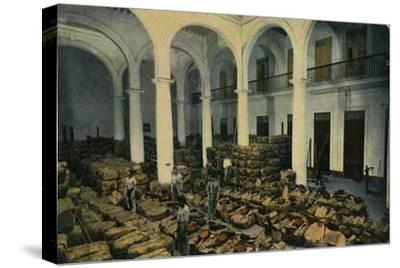 Warehouse of Leaf Tobacco, Havana, Cuba, c1910s-Unknown-Stretched Canvas Print
