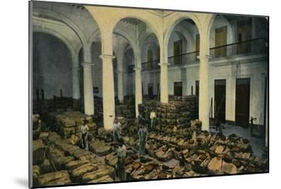 Warehouse of Leaf Tobacco, Havana, Cuba, c1910s-Unknown-Mounted Giclee Print