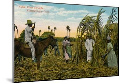 Cuba: Corte de Cana. Cutting Sugar Cane, c1910-Unknown-Mounted Giclee Print