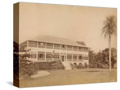 'Government House, near Kingston, Jamaica' c20th century-Unknown-Stretched Canvas Print