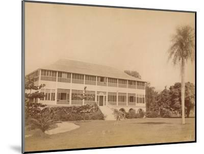 'Government House, near Kingston, Jamaica' c20th century-Unknown-Mounted Photographic Print