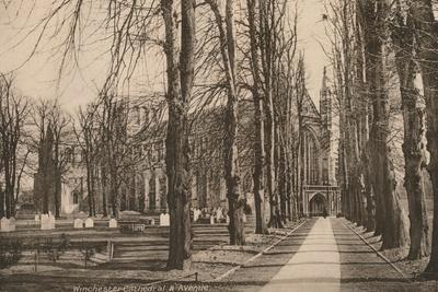 Winchester Cathedral and Avenue, Hampshire, early 20th century(?)-Unknown-Framed Photographic Print