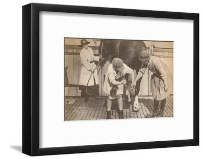'Women as farriers in the horse hospital of a big firm of haulage contactors', c1916-Unknown-Framed Photographic Print