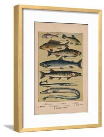'Fish', 1907, (1907)-Unknown-Framed Giclee Print
