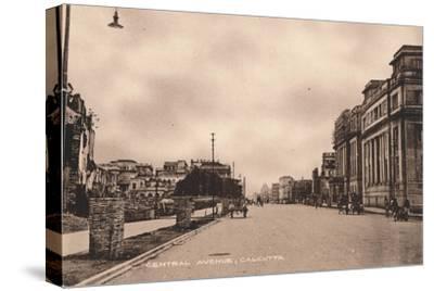 'Central Avenue, Calcutta', c1900-Unknown-Stretched Canvas Print