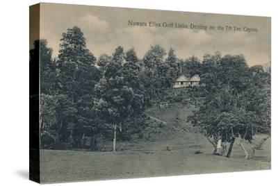 'Nuwara Eliya Golf Links, Driving on the 7th Tee, Ceylon', c1900-Unknown-Stretched Canvas Print