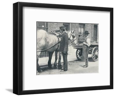 RSPCA inspector examining a horse, c1903 (1903)-Unknown-Framed Photographic Print