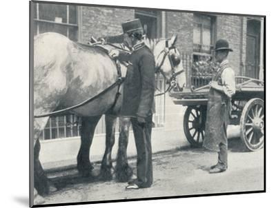 RSPCA inspector examining a horse, c1903 (1903)-Unknown-Mounted Photographic Print