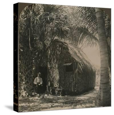 'Thatched Cottage in Cocoanut Grove, Florida, U.S.A.', c1900-Unknown-Stretched Canvas Print