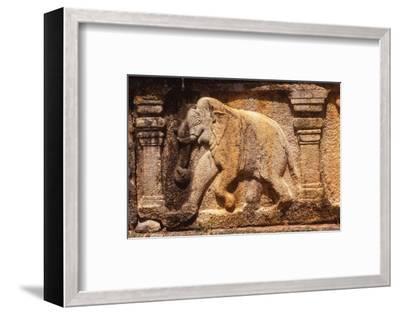 Elephant Frieze on Base of Audience Hall, Polunnaruwa, Sri Lanka, 20th century-Unknown-Framed Photographic Print