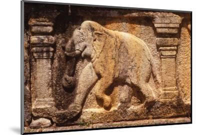 Elephant Frieze on Base of Audience Hall, Polunnaruwa, Sri Lanka, 20th century-Unknown-Mounted Photographic Print