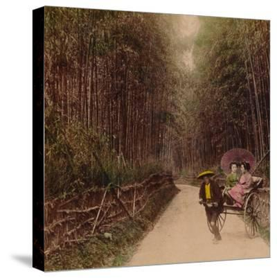 'Bamboo Avenue, Kyoto, Japan', 1896-Unknown-Stretched Canvas Print