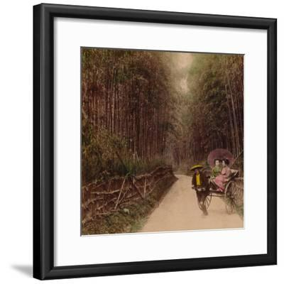 'Bamboo Avenue, Kyoto, Japan', 1896-Unknown-Framed Photographic Print