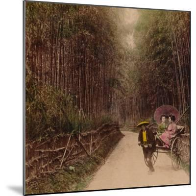 'Bamboo Avenue, Kyoto, Japan', 1896-Unknown-Mounted Photographic Print