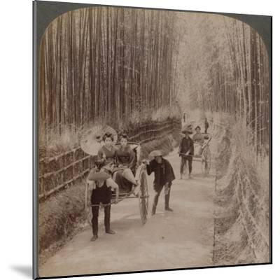 Under the bamboo trees - on the famous avenue near Kiyomizu, Kyoto, Japan, 1904-Unknown-Mounted Photographic Print
