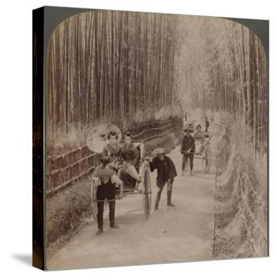 Under the bamboo trees - on the famous avenue near Kiyomizu, Kyoto, Japan, 1904-Unknown-Stretched Canvas Print