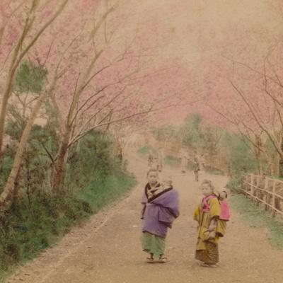 'Youthful Mothers of Japan', 1896-Unknown-Framed Photographic Print