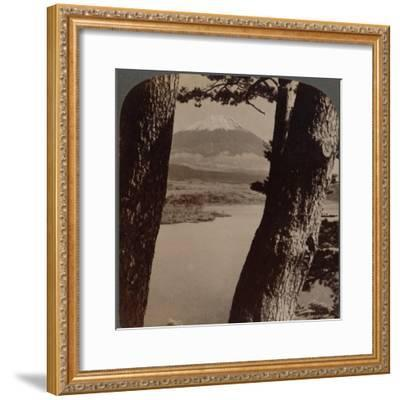 'Glorious Fuji, beloved by artists and poets, seen through pines at Lake Motosu, Japan', 1904-Unknown-Framed Photographic Print