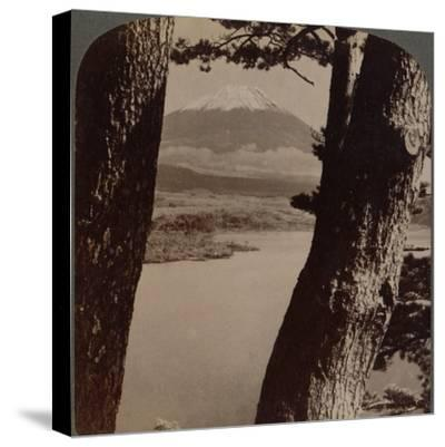 'Glorious Fuji, beloved by artists and poets, seen through pines at Lake Motosu, Japan', 1904-Unknown-Stretched Canvas Print