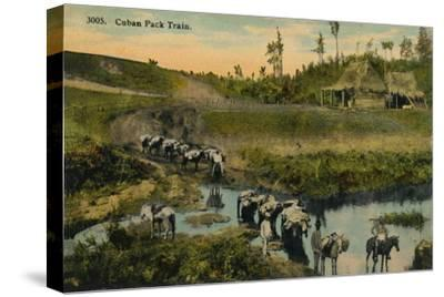 'Cuban Pack Train', c1910-Unknown-Stretched Canvas Print