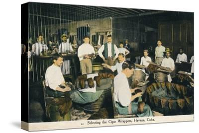 'Selecting the Cigar Wrappers, Havana, Cuba', c1910-Unknown-Stretched Canvas Print