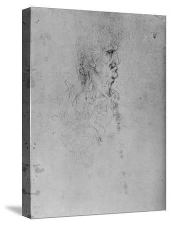 'Profile to the Right of an Old Man', c1480 (1945)-Leonardo da Vinci-Stretched Canvas Print