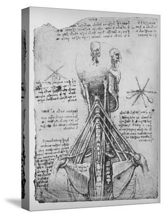 'Study of the Back View of a Skeleton, Showing the Tendons of the Neck', c1480 (1945)-Leonardo da Vinci-Stretched Canvas Print
