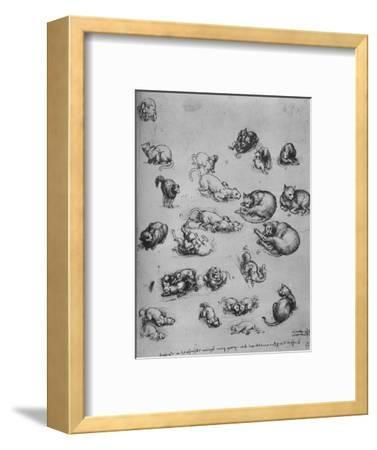 'Studies of Cats and of a Dragon', c1480 (1945)-Leonardo da Vinci-Framed Premium Giclee Print