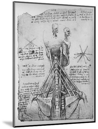 'Study of the Back View of a Skeleton, Showing the Tendons of the Neck', c1480 (1945)-Leonardo da Vinci-Mounted Giclee Print