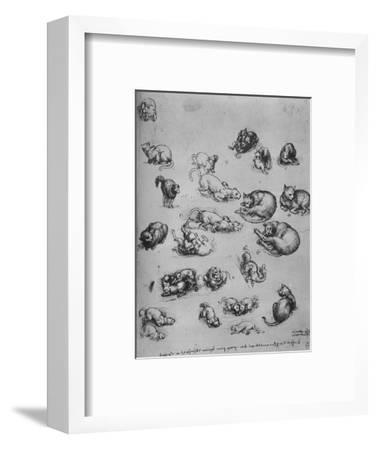 'Studies of Cats and of a Dragon', c1480 (1945)-Leonardo da Vinci-Framed Giclee Print