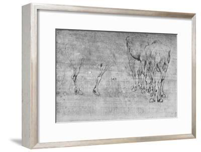 'Studies of Horses Grazing', c1480 (1945)-Leonardo da Vinci-Framed Giclee Print