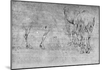 'Studies of Horses Grazing', c1480 (1945)-Leonardo da Vinci-Mounted Giclee Print