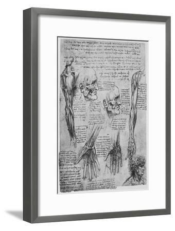 'Studies of the Muscles of the Face and Arm', c1480 (1945)-Leonardo da Vinci-Framed Giclee Print