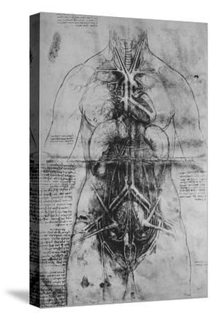 'Dissection of the Principal Organs of a Woman', c1480 (1945)-Leonardo da Vinci-Stretched Canvas Print